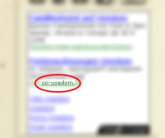 CSI Usedom