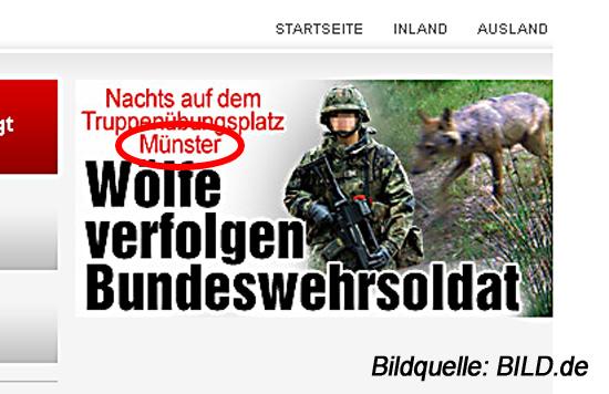 BILD.de Wölfe in Munster
