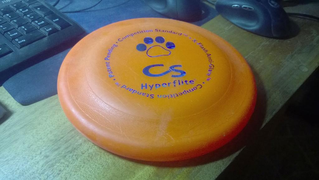 frisbee hund hundefrisbee paul